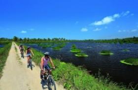 Natureza em duas rodas: curta Porto de Galinhas de bike