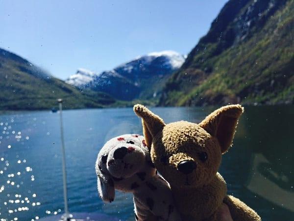 Para chegar a Flam, o barco passa pelo meio do fiorde. As #cadelasviajantes do instagram não perderam a selfie - foto Instagram @maguinhadog