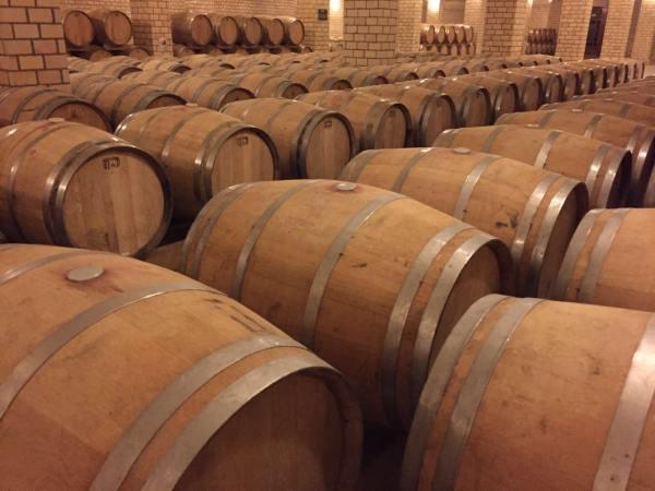 foto juliana_zorzato_ladobviagem_vinícola (5)