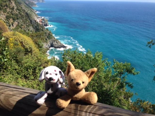 As #cadelasviajantes fizeram a trilha pela montanha que liga um vilarejo a outro em Cinque Terre. Imperdível!