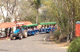 Turismo rural e de aventura! Saiba onde se hospedar em São Pedro (SP)