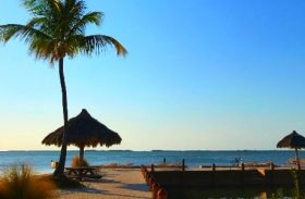 Resort Kona Kai forma refúgio botânico com praia particular em Key Largo
