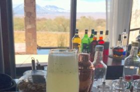 Descubra como fazer o pisco do deserto e o drink cactus, do Atacama