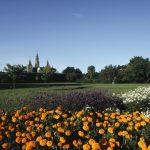 Jardim no Rosemborg