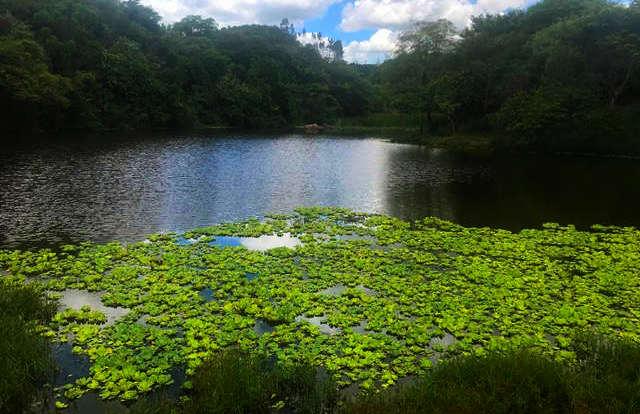 capoava lago